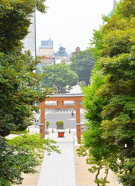 宇都宮二荒山神社階段上からバンバ通りを見下ろした景色