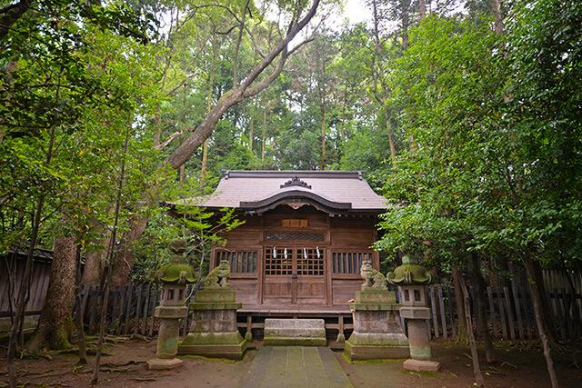 緑に囲まれた社殿