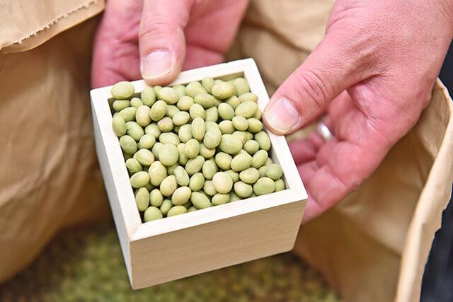 大豆乃館で使用している国産大豆