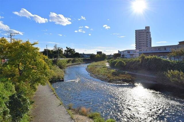 田川の遊歩道