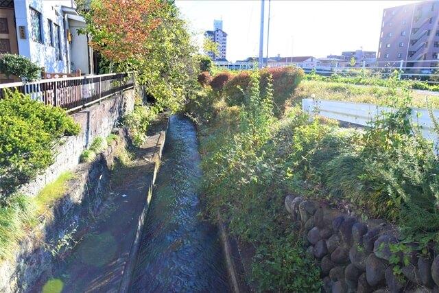 緑あふれる用水路