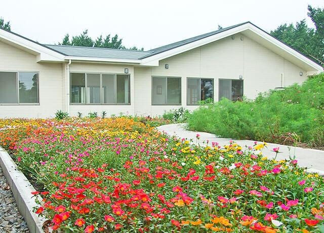 館内に植えられたいろいろな花や木
