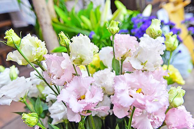 花物語にあったスイートピーなどの花