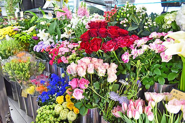 花うさぎ 切り花
