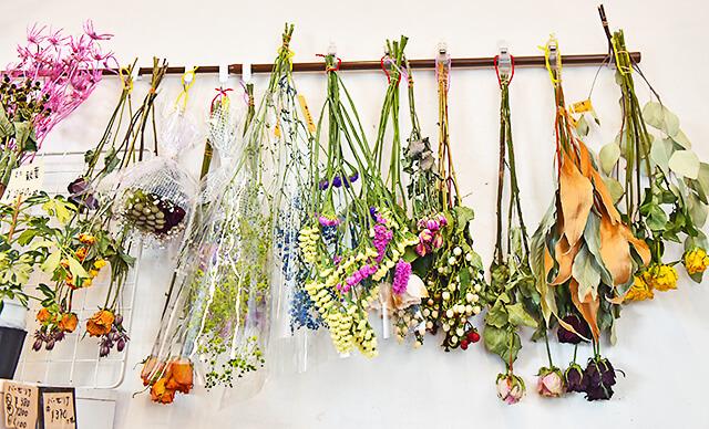 花うさぎ 壁に飾られたドライフラワー