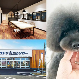 キニナルあの店を紹介! 宇都宮のニューオープン&リニューアル(2020年1~6月)